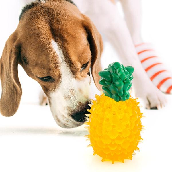 Legetøj til hunde Fruits